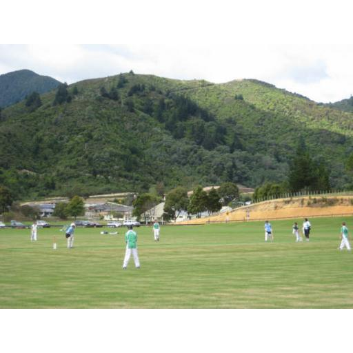 Marlborough Cricket Launches New Website